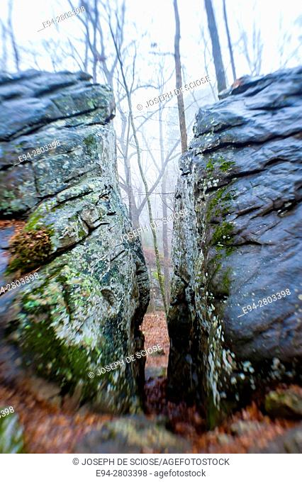 A squeeze passage between 2 large boulders in a forest on a cold foggy day, The Moss Rock Preserve, Hoover, Alabama USA
