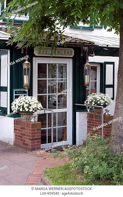 Flower pots with white marguerite in front of a house  Island Spiekeroog  East Frisian island  North Sea  Germany