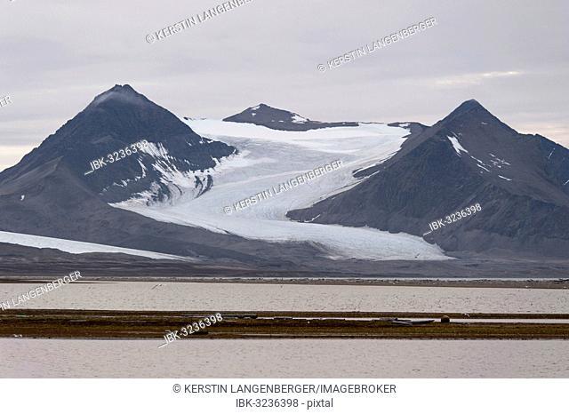 Archibald Geikiebreen, Poolepynten, Prins Karls Forland, Svalbard Archipelago, Svalbard and Jan Mayen, Norway