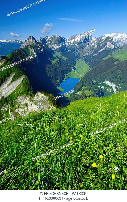 View from Hoher Kasten, Appenzell and St. Gall, Switzerland