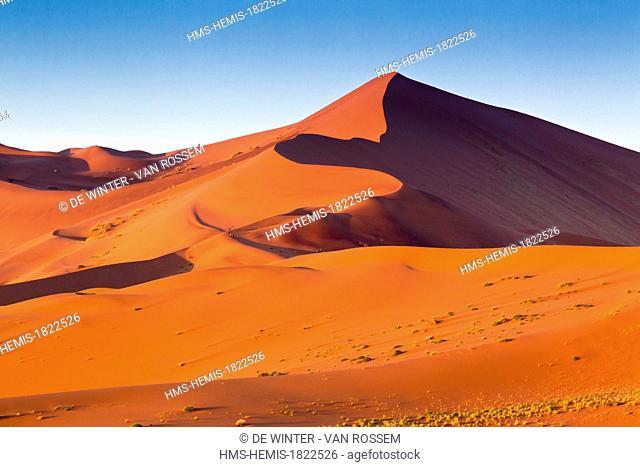Namibia, Hardap region, Namib desert, Namib-Naukluft national park, Namib Sand Sea listed as World Heritage by UNESCO, Sossusvlei, view over Dune 45