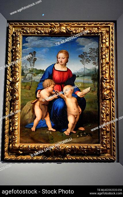 The painting Madonna with child and San Giovannino called 'Madonna del Cardellino' by Raffaello Sanzio at the Uffizi Gallery reopening, Florence