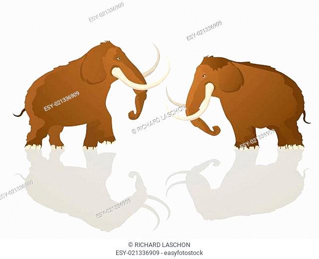 Charging bulls