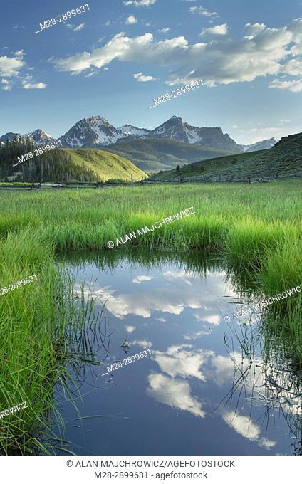 Wetlands in Stanley Basin, Sawtooth Mountains, Idaho, USA