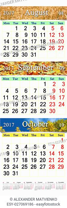calendar for three months August September and October 2017 with images of field of wheat and yellow leaves. Calendars for mass printing and using as wall...