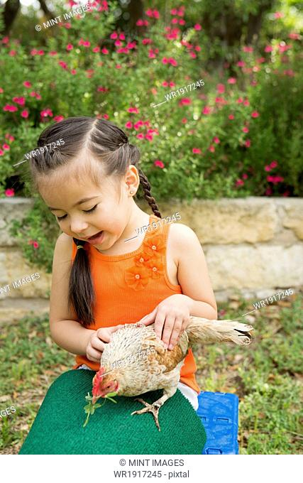 A child with a hen on her lap