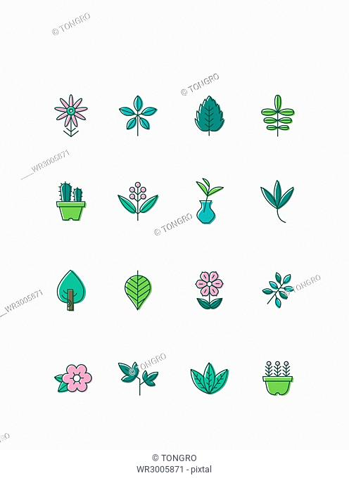 Icon set of flowers and plants