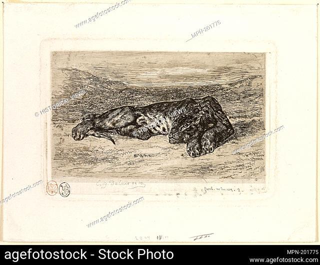 Tiger Resting in the Desert - 1846 - Eugène Delacroix French, 1798-1863 - Artist: Eugène Delacroix, Origin: France, Date: 1846