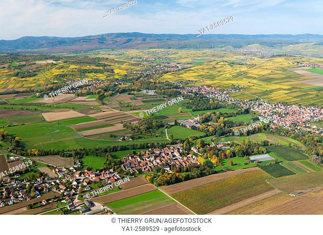 France, Bas Rhin 67, village of Dachstein, back villages of Ergersheim and Wolxheim, vineyards in autumn aerial view