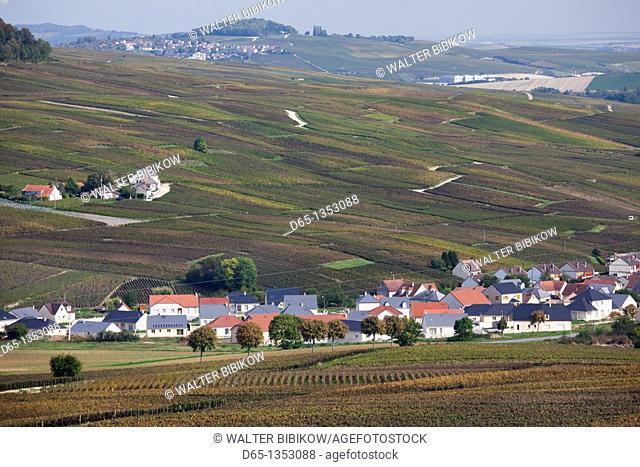 France, Marne, Champagne Region, Brugny, elevated vineyard view