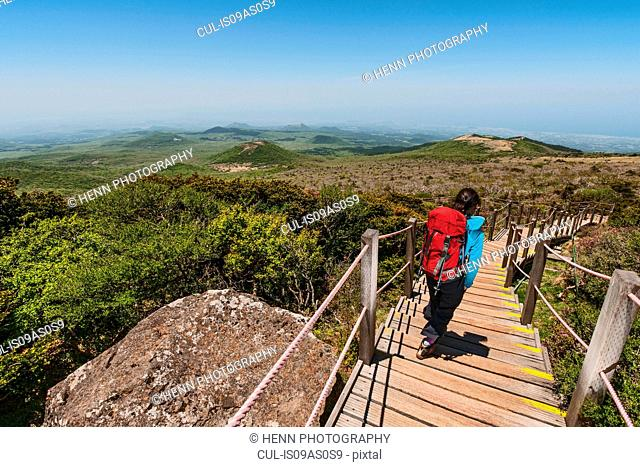 Rear view of woman hiking down wooden steps, Jeju Island, South Korea