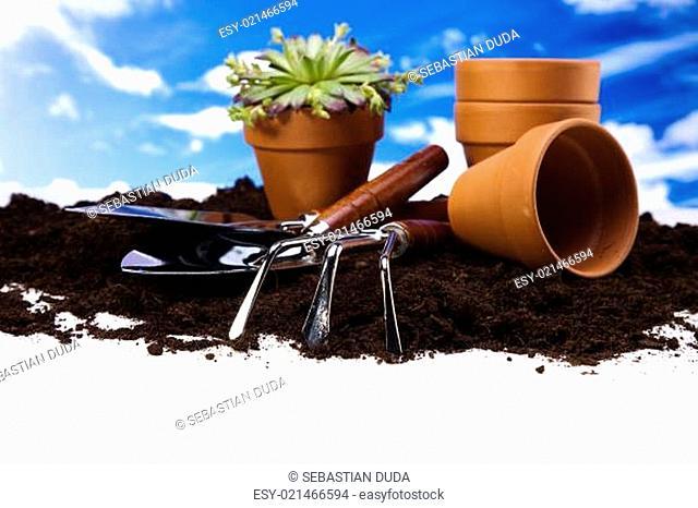 Gardening equipment on green plants
