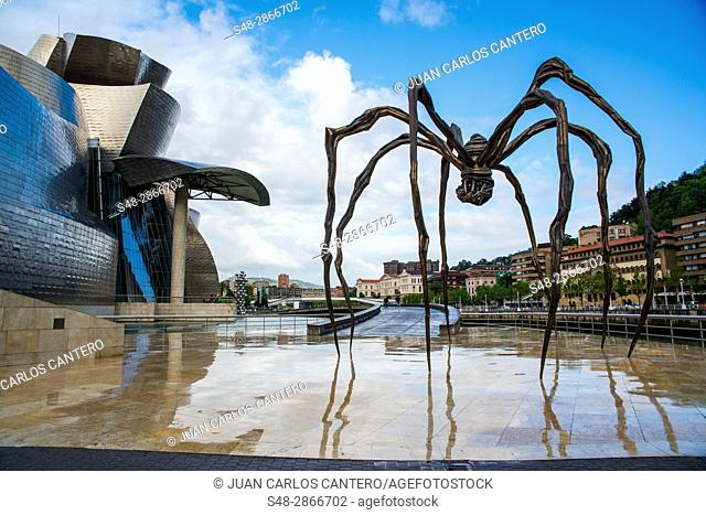 Museo Guggenheim. Bilbao. Vizcaya. Basque Country. Spain. Europe
