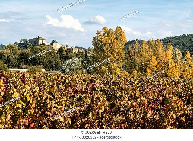 France, Alpes-de-Haute-Provence, Luberon, Natural Regional Park, Ansouis, vineyard, Provencial Village, Vaucluse