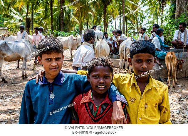 Three local boys posing with arms around one another, local scene, Tamil Nadu, India