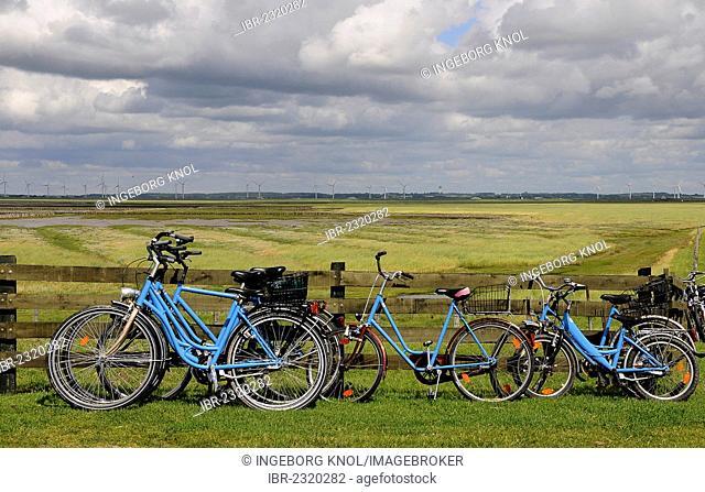 Bicycles on the Hamburger Hallig, North Frisia, Schleswig-Holstein, Germany, Europe
