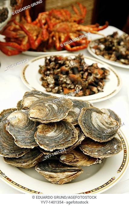 Seafood in 'The Garzas Restaurant' Coruña, Galicia, Spain