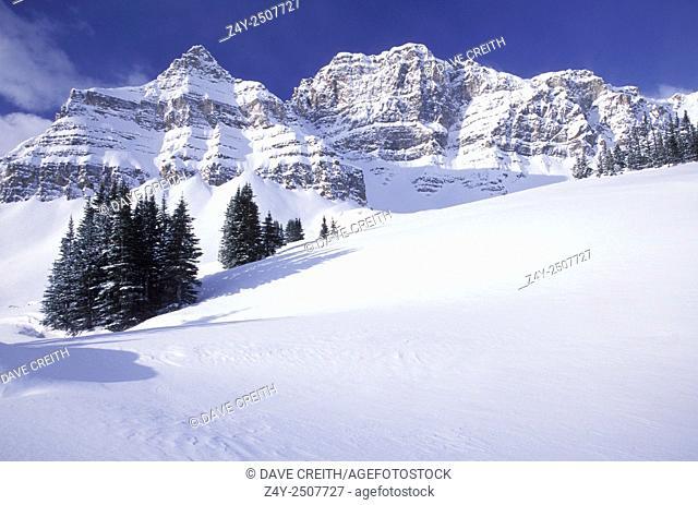 Winter in Pipestone Pass, Banff National Park, Alberta, Canada