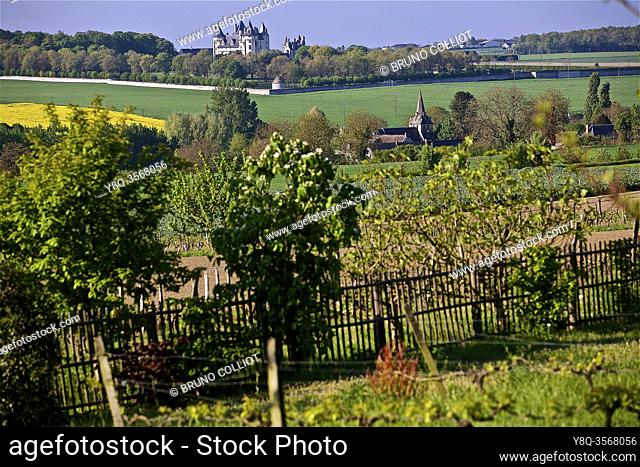 landscape west view of the garden of the house of francois Rabelais humanist writer, Seuilly, France