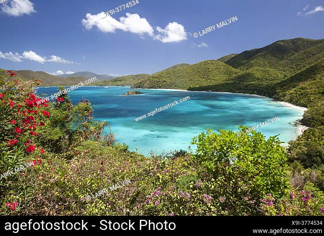 View above Cinnamon Bay with foreground flowers on the island of St. John in the United States Virgin Islands