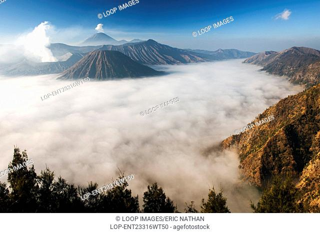 Steam venting from Mount Bromo volcano in Bromo Tengger Semeru National Park in Indonesia