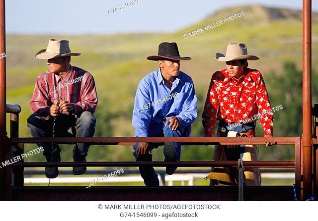 Montana Rodeo Contestants