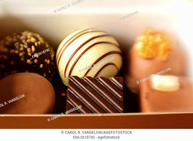 Box of praline-filled chocolates. Shot with LensBaby for selective focus