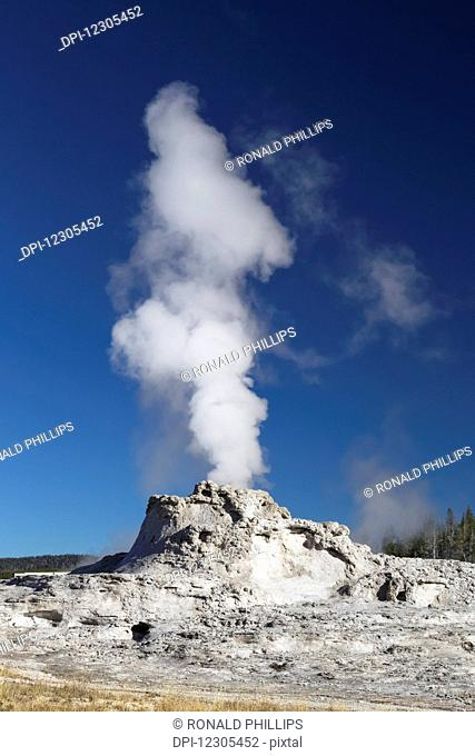 Castle Geyser, Yellowstone National Park; Wyoming, United States of America