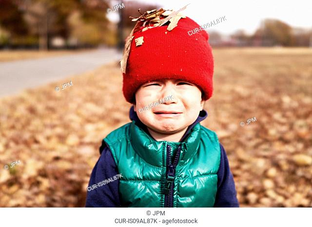 Portrait of male toddler with autumn leaves on red knitted hat