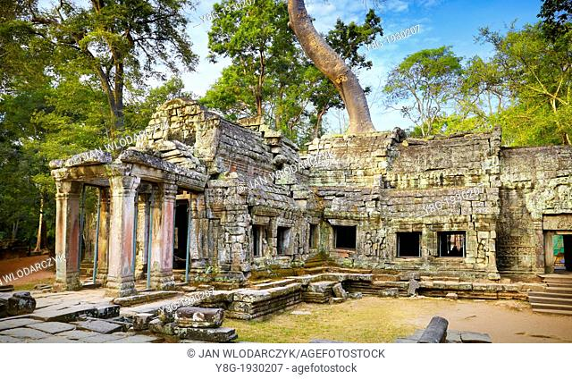 Angkor Temples Complex - ruins of Ta Prohm Temple, Angkor old Khmer Empire, Siem Reap Province, Cambodia, Asia, UNESCO