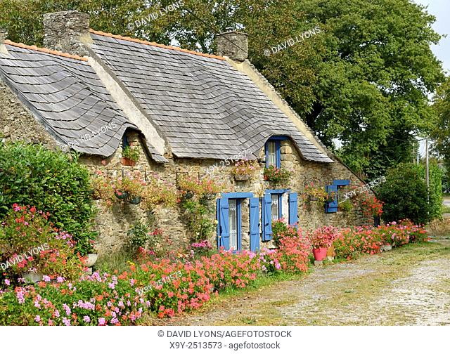 Traditional old French Breton rural roadside cottage house and garden. Village of Marzan, Brittany, France. Shingle roof. Summer