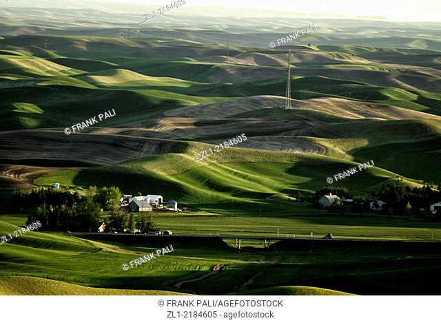 The Palouse Scenic Byway, located in the heart of the Palouse region in southeastern Washington, combines 208 miles of rolling hills and farmland with rich...