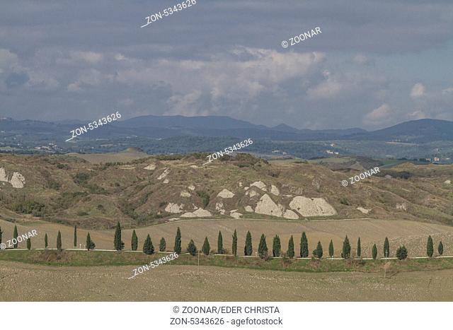 Zypressenallee in der Toskana - beliebtes und oftmals fotographiertes Fotomotiv