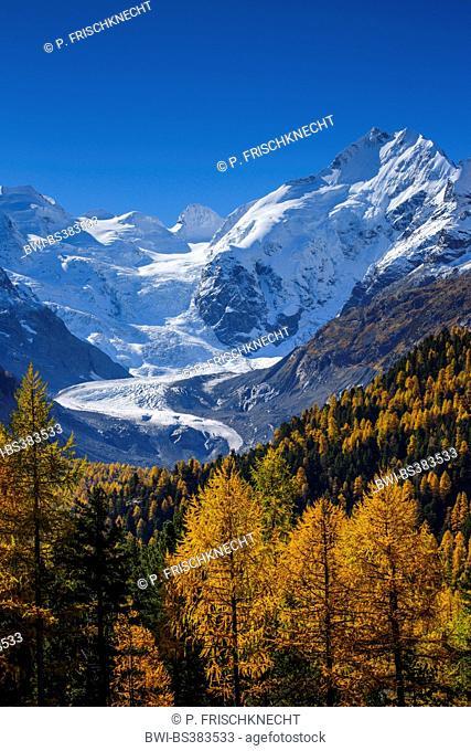 Piz Piz Palue, 3905 m, Piz Bernina, 4049 m, Piz Morteratsch,3751, Morteratsch Glacier, Switzerland, Grisons, Oberengadin