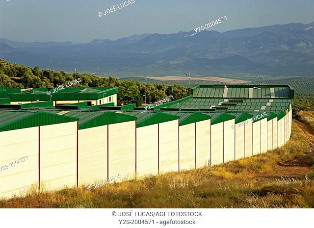 Industrial park, Ubeda, Jaen-province, Region of Andalusia, Spain, Europe