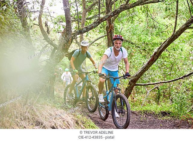 Men mountain biking on trail in woods