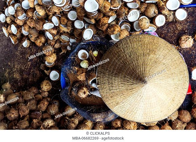 Mekong Delta, Southern Vietnam. Coconut factory