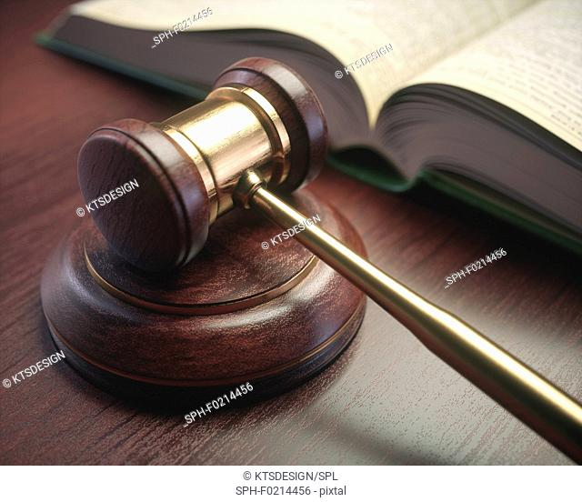 Judge's gavel and book