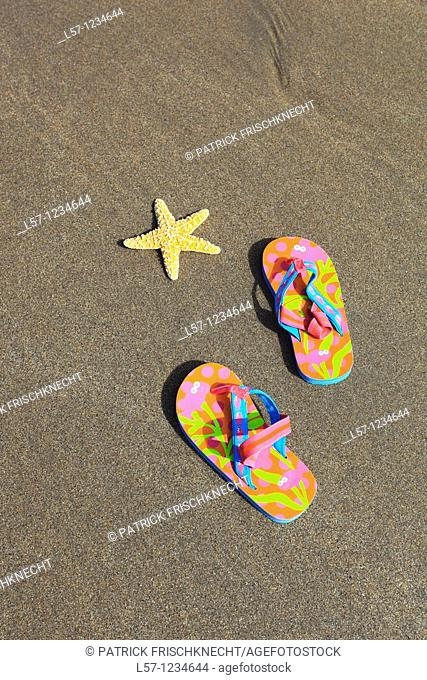 flip-flops and sea star on sandy beach, Sutherland, Scotland