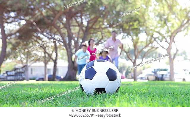 Soccer ball resting on grass as family run towards it before boy kicks it. Shot on Canon 5d Mk2 with a frame rate of 30fps