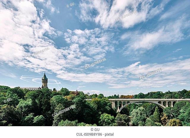 Bridge among tree tops, Luxembourg, Europe