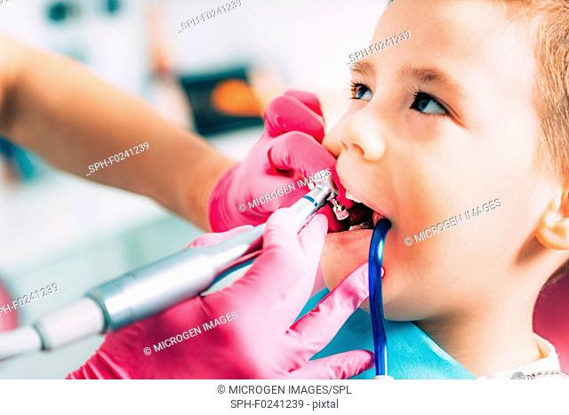 Orthodontist working with little boy