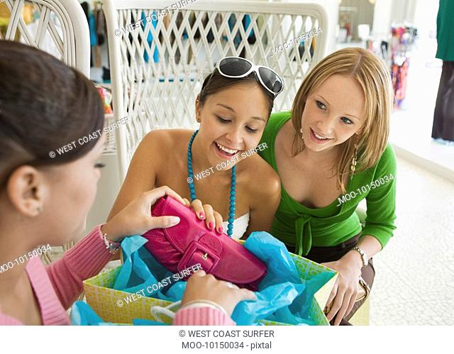 Friends Looking at Shopping Purchases