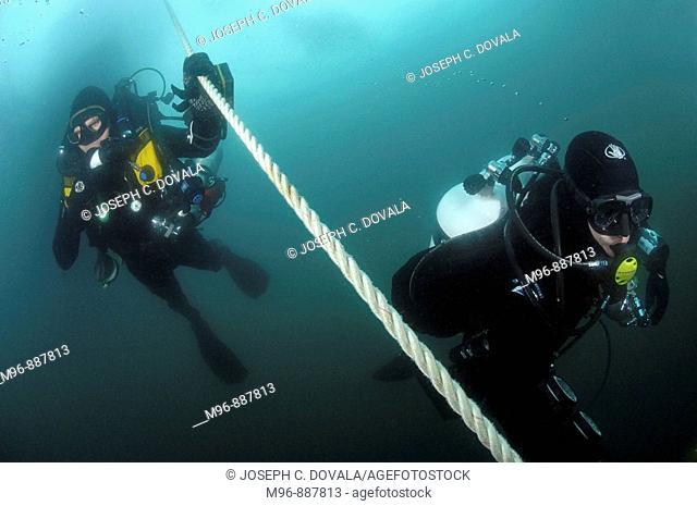 Scuba divers ascending down line, Anacapa Island, California, USA
