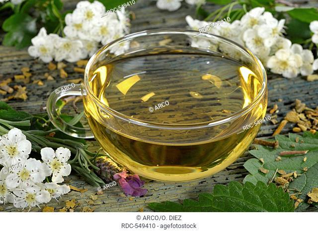 Cardiovascular tea, Mistletoe, valerian, common lavender, hawthorn herb, nettle, hibiscus / (Viscum album), (Crataegus monogyna), (Common valerian)