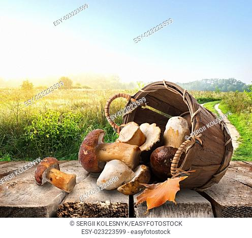 Mushrooms in a basket on wooden table