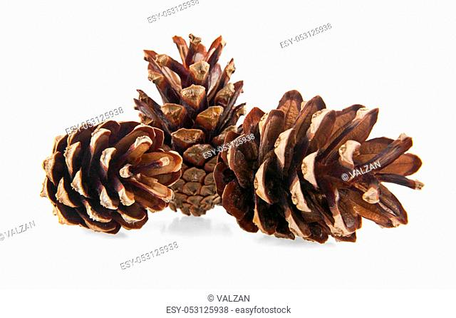 cones on a white background