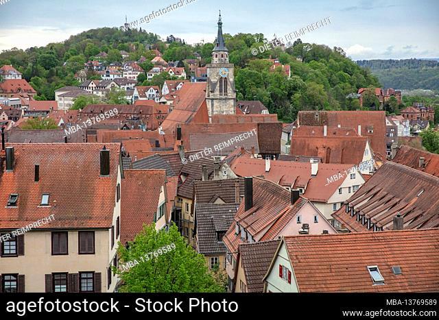 Old town Tübingen, roofs, collegiate church