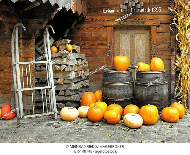Autumnal decorations in the Switzerland area, Europapark Rust, Baden-Wuerttemberg, Germany