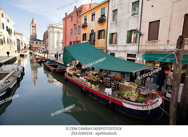 Greengrocer's barge on canal in Rio San Barnaba near Ponte de Pugni bridge, Venice, Veneto, Italy, Europe